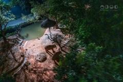 Chimelong Safari